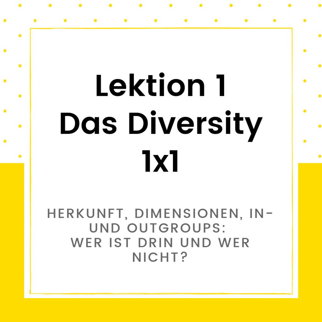 Onlinekurs Diversity